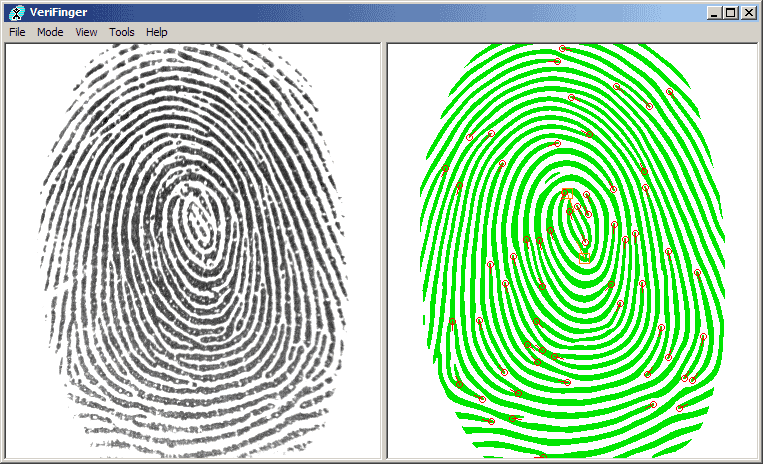 to what extent does fingerprint recognition Although the base principle is simple, making fingerprint reader  at the scale of  such capacitors, fingerprint ridges are like hills and valleys.